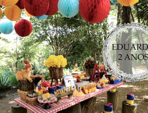 Filmagem Aniversário Infantil Parque BH – 2 anos da Eduarda